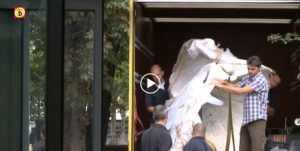 VIDEO Pottwal Natuur Museum Brabant | Omroep Brabant (NL)