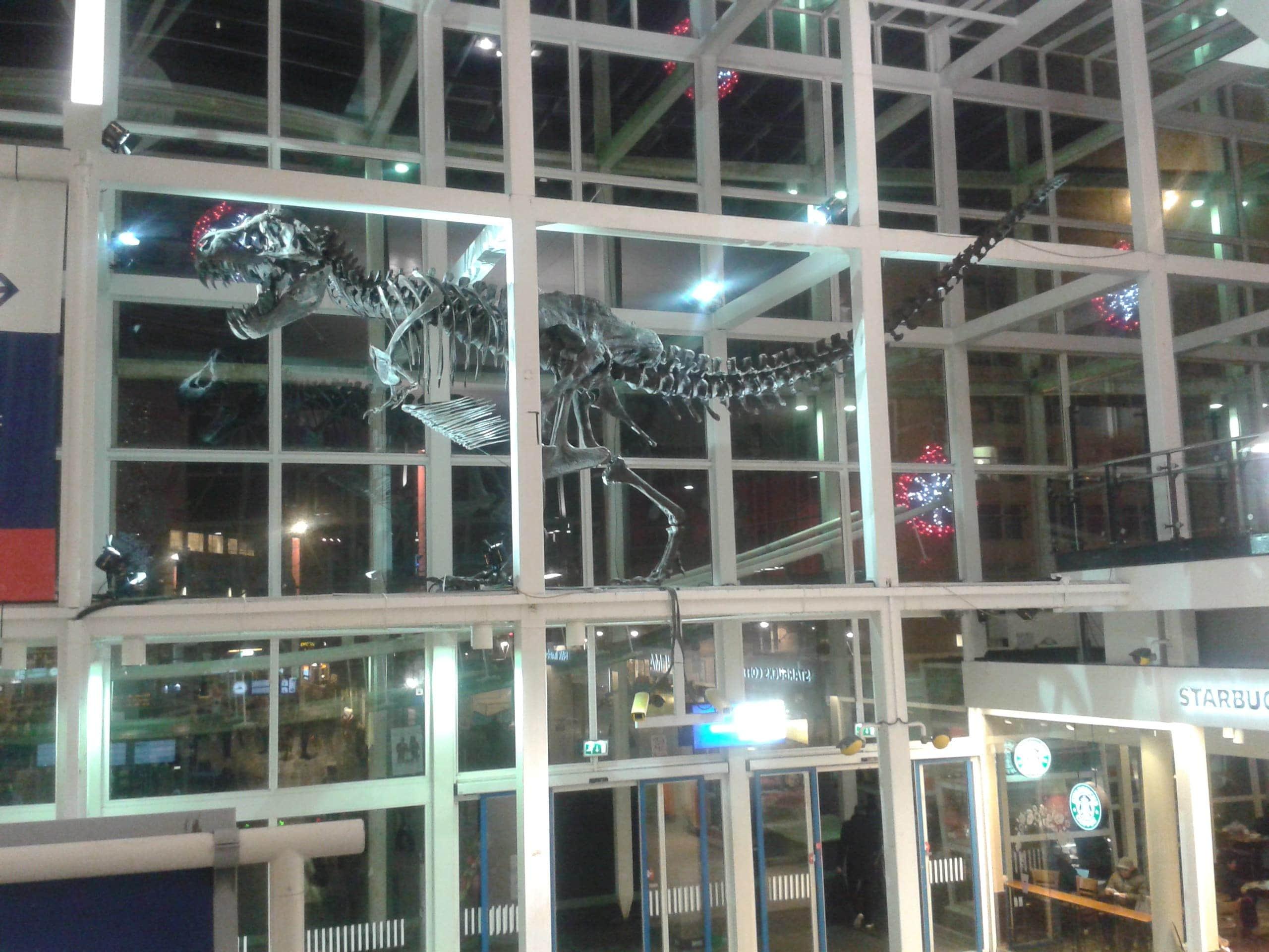 Modellen & Reconstructies | Opbouw Tyrannosaurus Rex | i.s.m. Naturalis en Creatures & Features