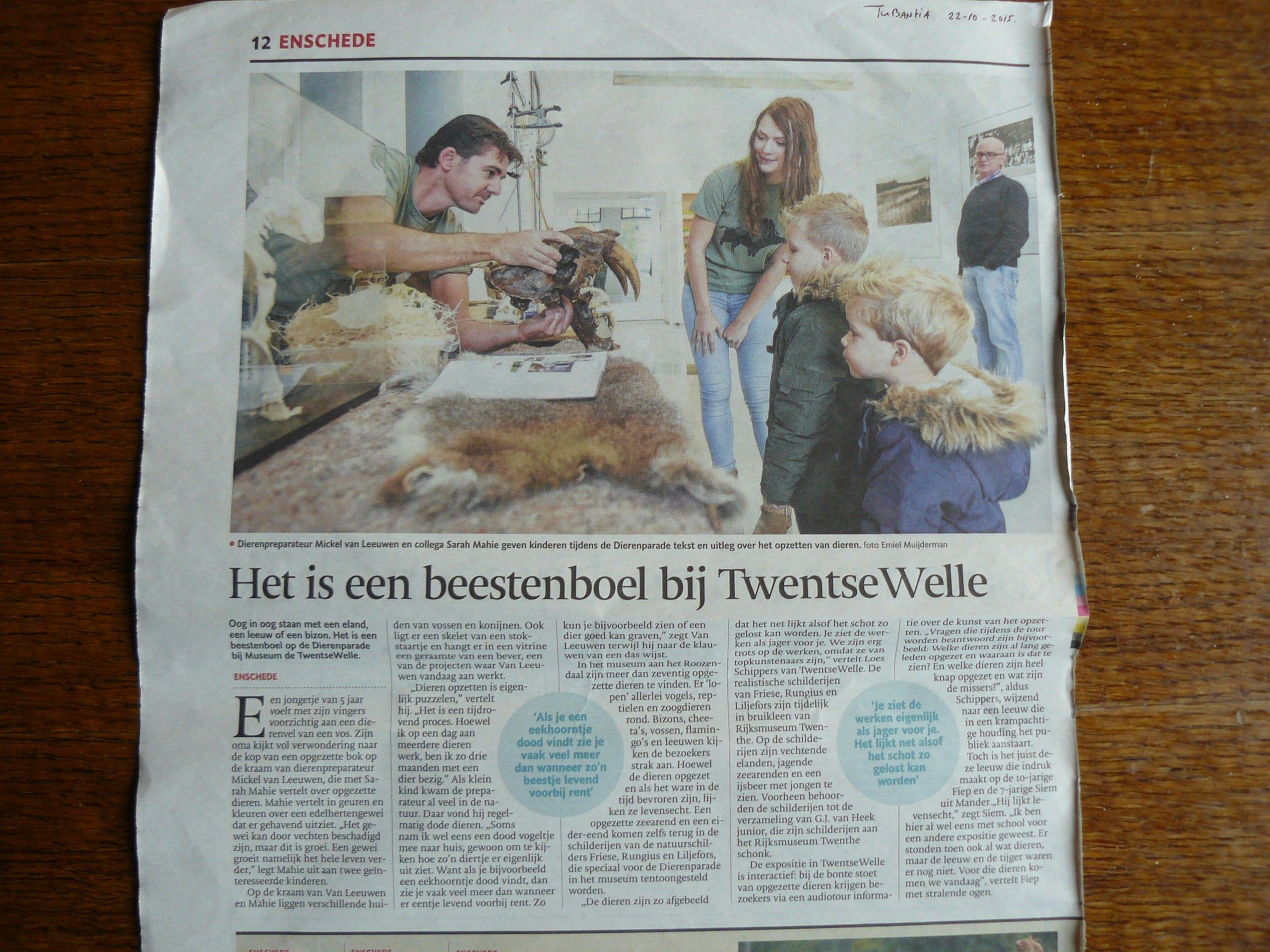 Twentse Welle (NL)