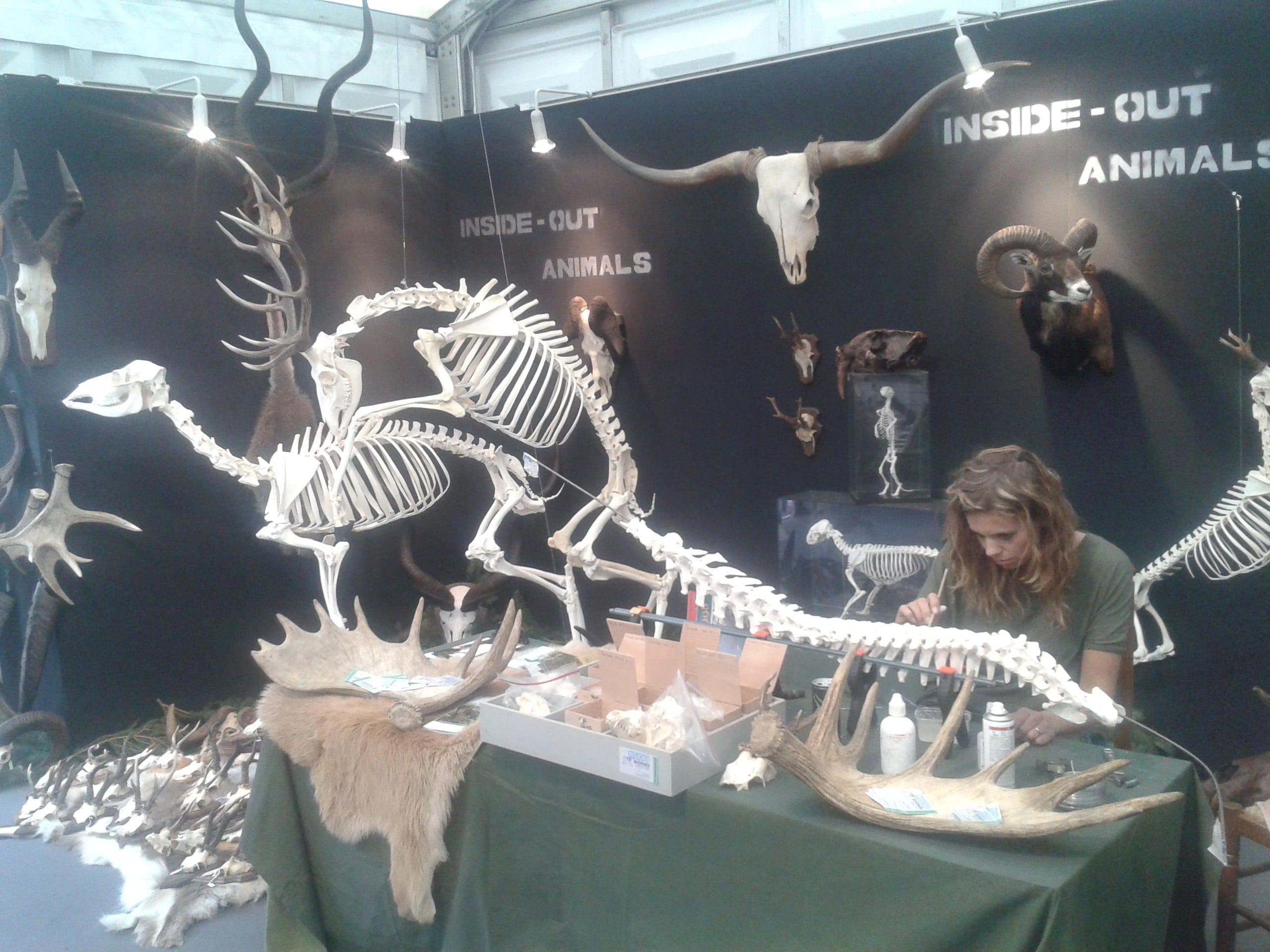 Expo & Educatie | Faunabeurs II | Ardennen