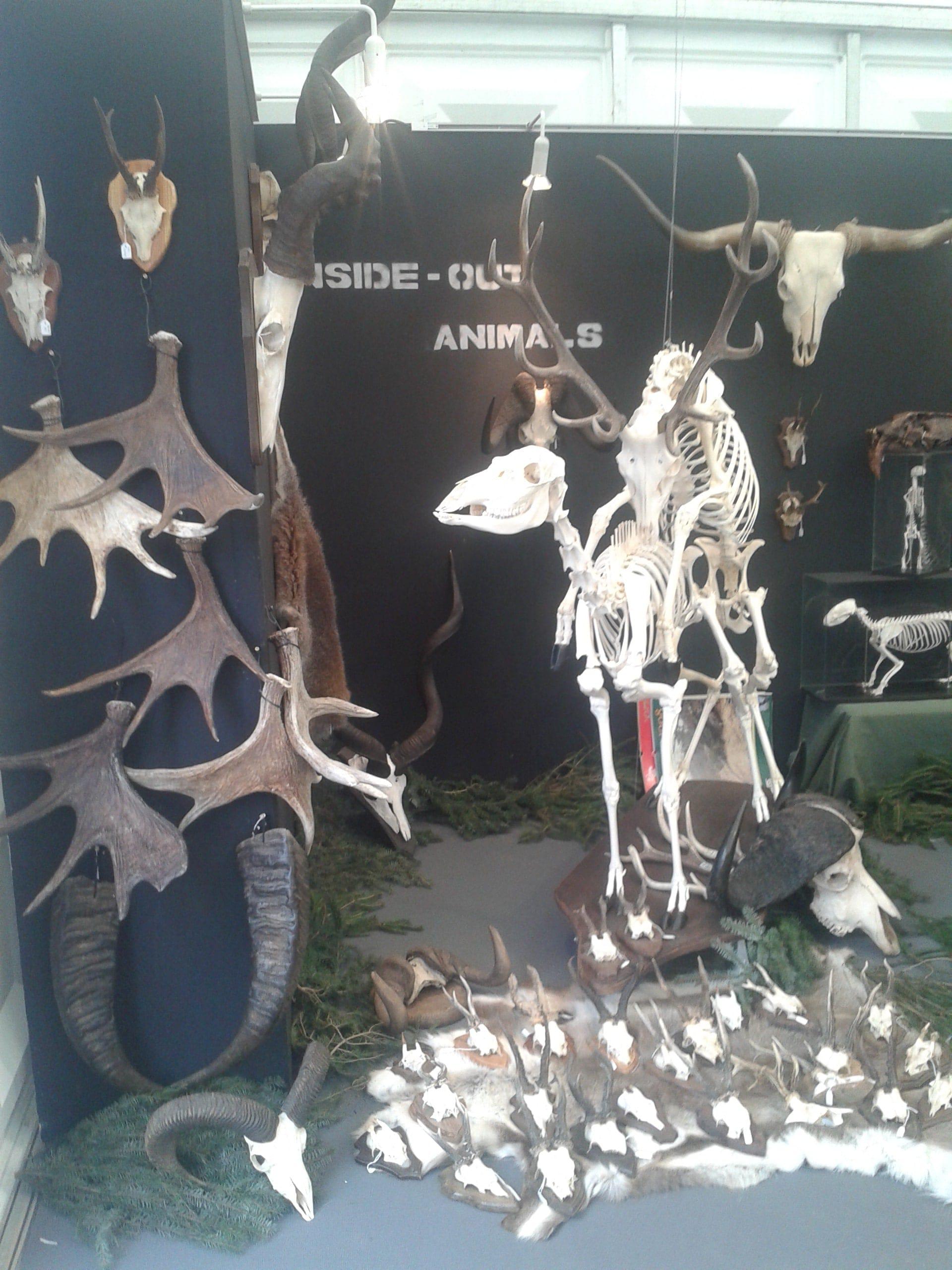 Expo & Educatie | Faunabeurs III | Ardennen