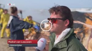 VIDEO Finwal Texel | NOS Nachrichten