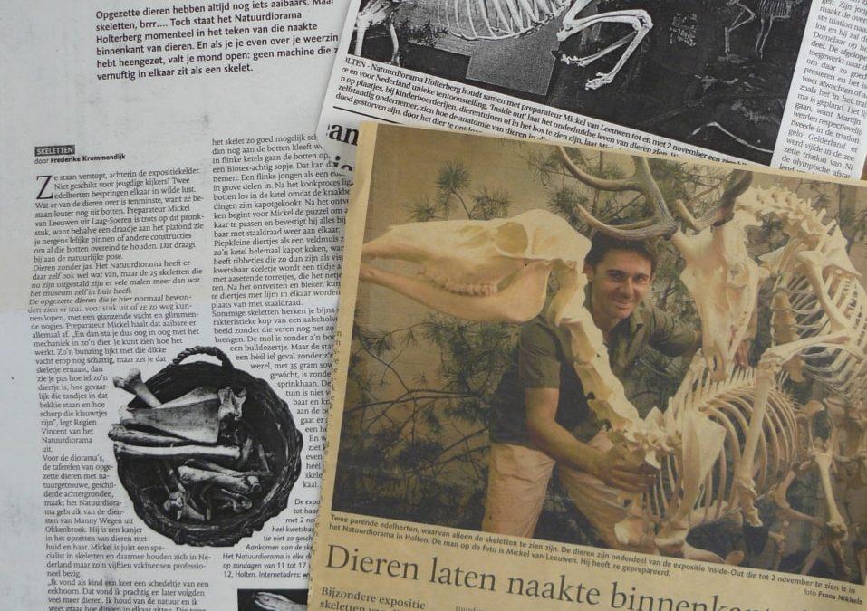 Naturdiorama Holterberg (NL)