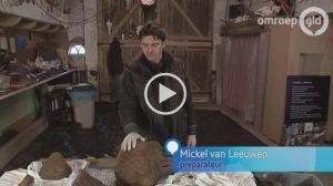 VIDEO Pottwal Ambergris | Omroep Gelderland (NL)