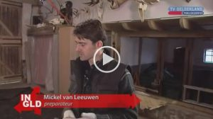 VIDEO | Cachalot Ambergris | TV Gelderland