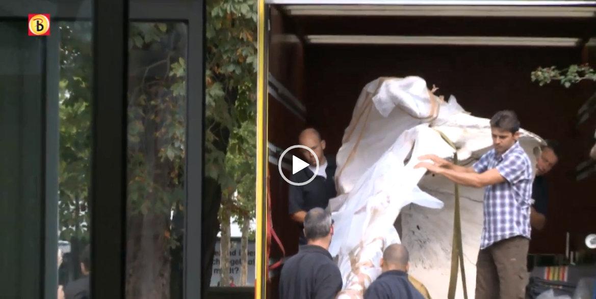 VIDEO Potvis Natuur Museum Brabant | Omroep Brabant