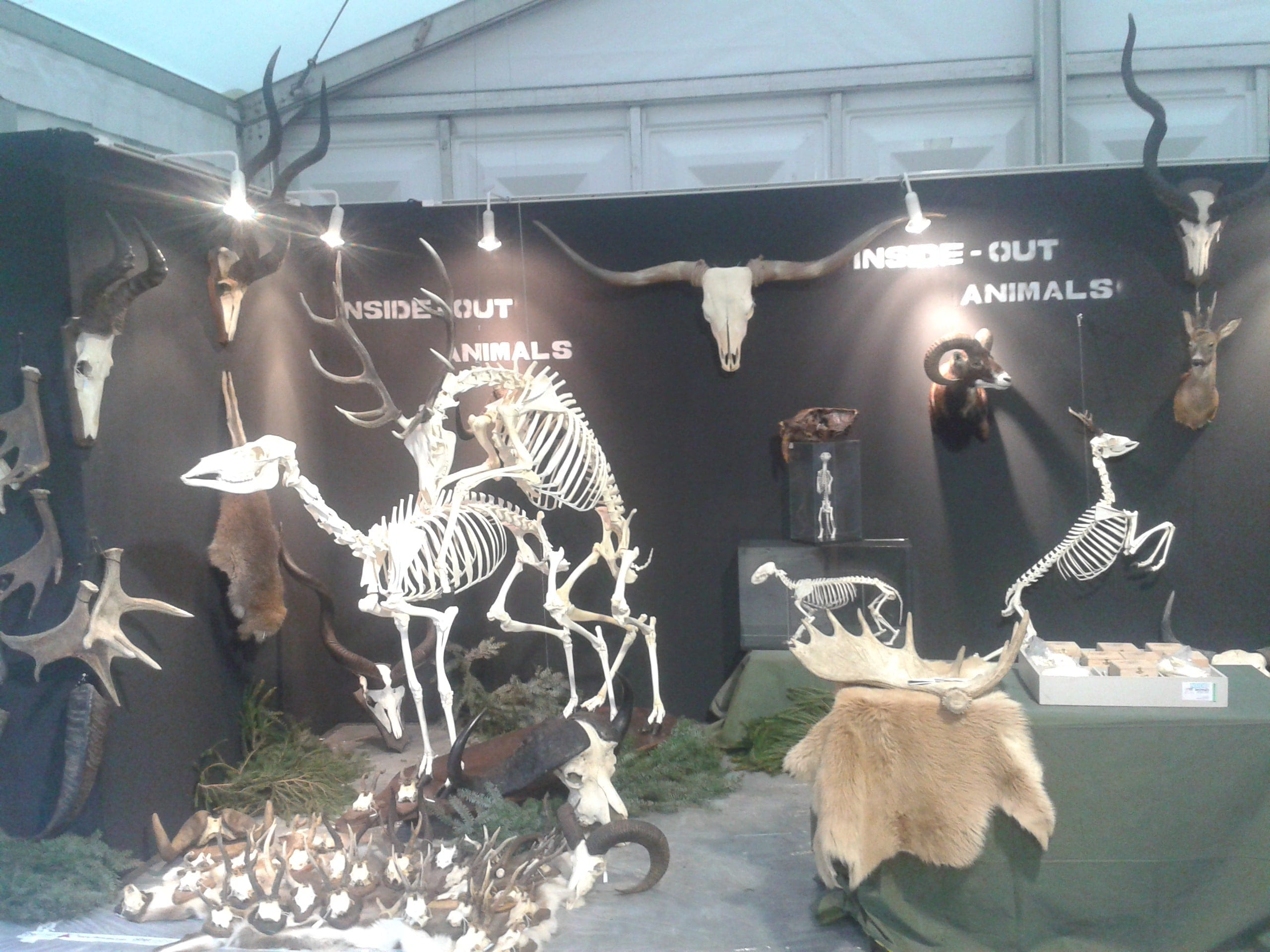 Expo & Educatie   Faunabeurs I   Ardennen