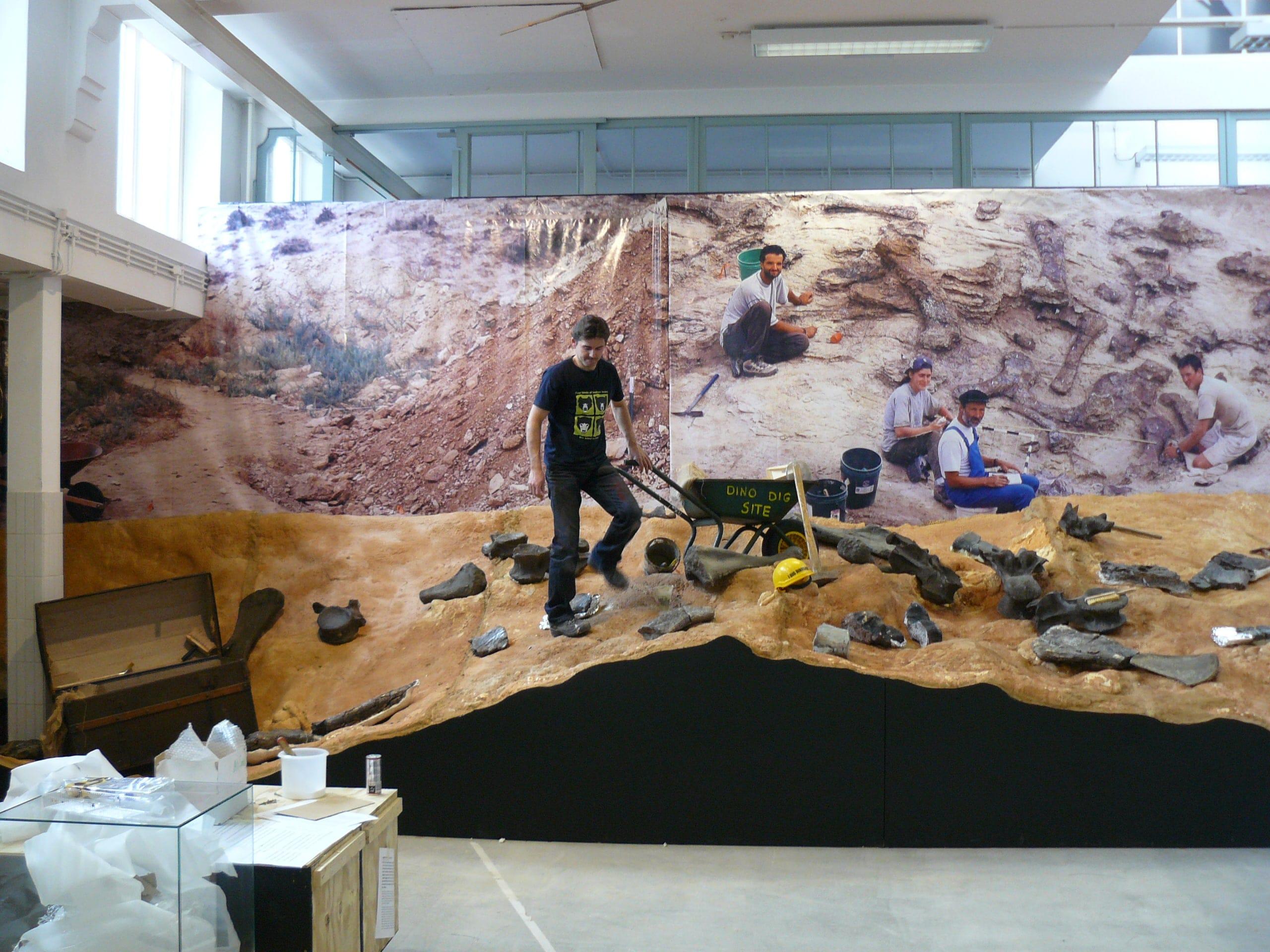 Expo & Educatie | Expo Dino I | Natuur Museum Brabant