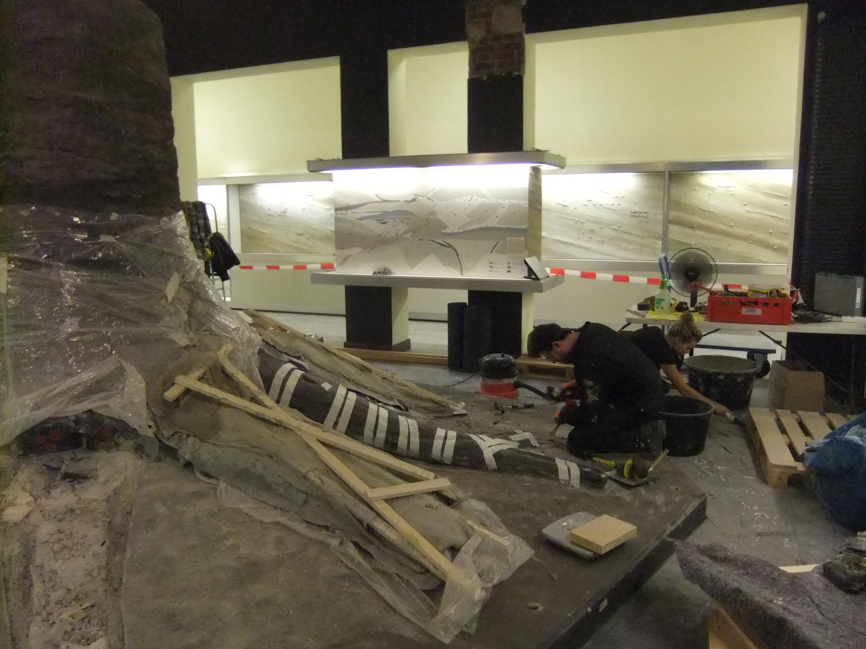 Fossielen & Dinosauriërs | Demontage Fossiele Boom II | Bergbaumuseum Bochum, Duitsland