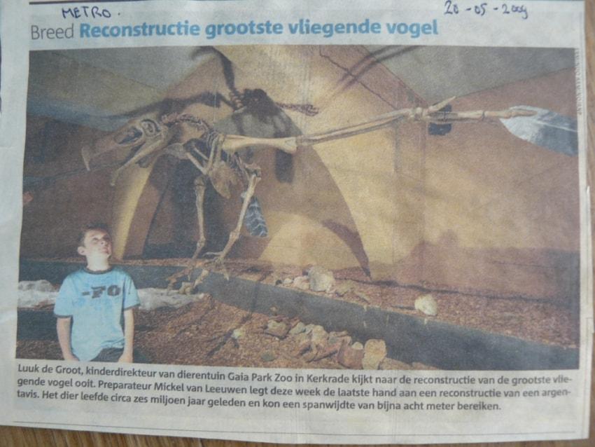 Krantenknipsels | Argentavis II | Metro