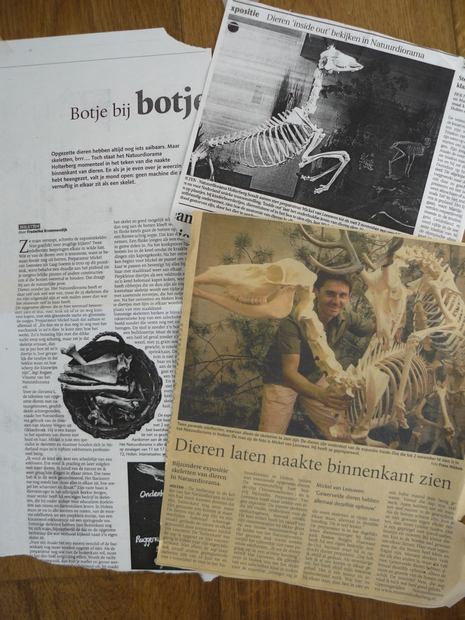 Krantenknipsels | Holterberg