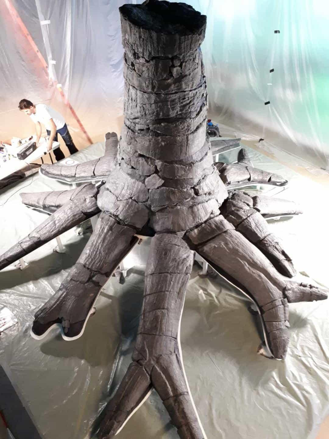 Fossielen & Dinosauriërs | montage gerestaureerde Fossiele Boom  | Bergbaumuseum Bochum, Duitsland