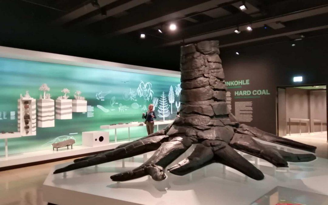 Oplevering Carbonbaum | Bergbaumuseum Bochum, D