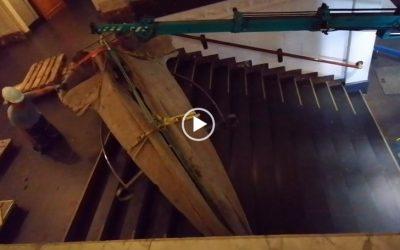Uithuizing skelet vinvis aquariumgebouw Artis